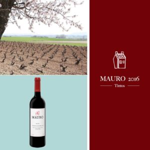 vino-mauro-2016