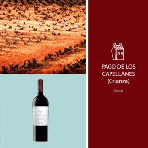 vino-pago-capellanes
